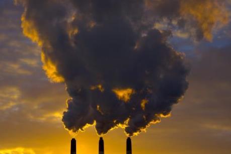 WHO: 23% trường hợp tử vong trên thế giới liên quan đến môi trường
