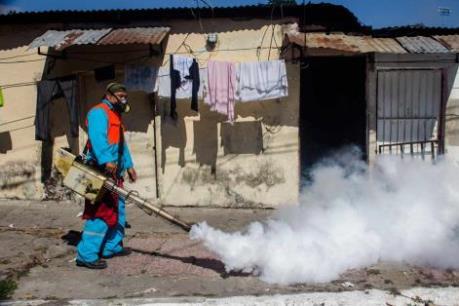 Phát hiện ca nhiễm virus Zika đầu tiên ở Bắc Kinh