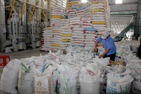 Xuất khẩu gạo tháng 2 tăng mạnh