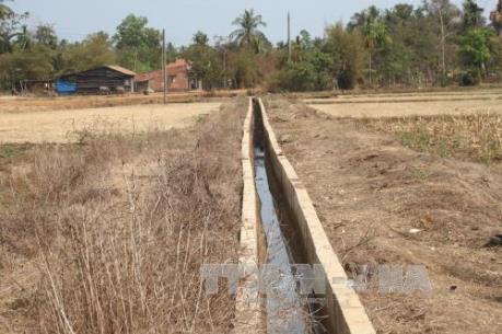 Bộ Nông nghiệp ra phương án chuyển đổi cây trồng ứng phó với hạn hán