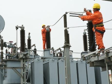 Vi phạm an toàn lưới điện khiến 6.500 khách hàng mất điện