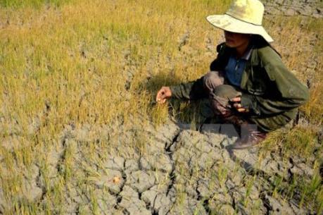 Thái Lan có thể mất gần 1% GDP vì hạn hán