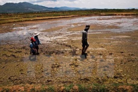 Liên Hợp Quốc: Thiếu nước có thể tác động tiêu cực tới việc làm và tăng trưởng