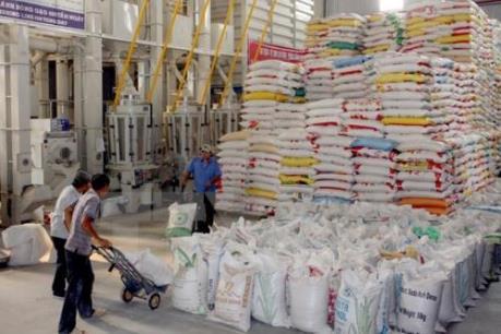 Xuất khẩu gạo 6 tháng đầu năm dự kiến tăng 12%
