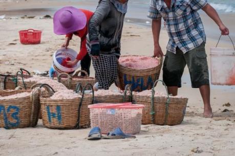 Điều tra tác hại của loại hóa chất dùng ướp ruốc tại Phú Yên