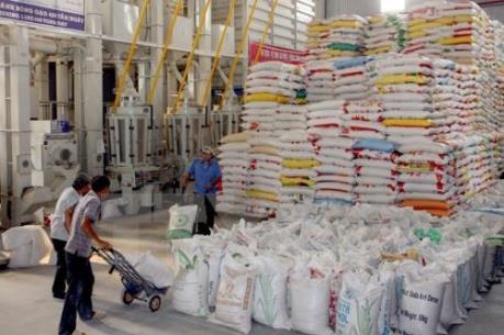 Doanh nghiệp Việt lên tiếng về kế hoạch xả kho dự trữ gạo của Thái Lan