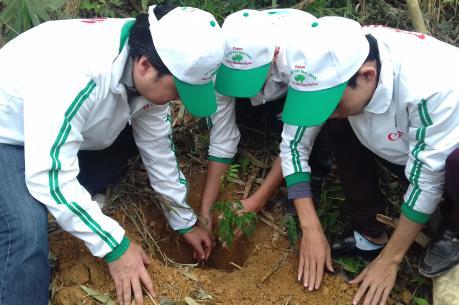 """Canon tham gia trồng rừng """"Vì một Việt Nam xanh"""" 2016"""