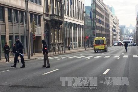 Tin mới về loạt vụ tấn công ở Bỉ