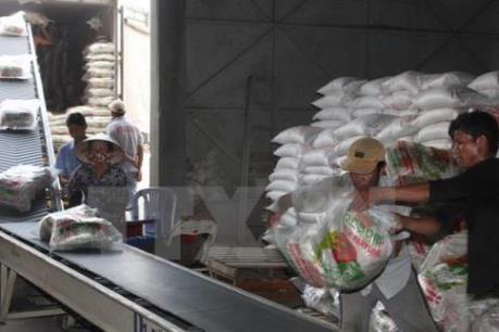 Phó Thủ tướng chỉ đạo rà soát tình hình sản xuất, xuất khẩu gạo