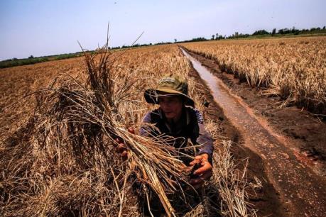 Phó Thủ tướng Vương Đình Huệ: Tây Nam bộ cần tăng cường liên kết vùng
