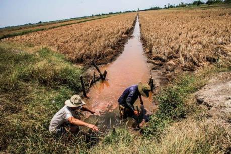 Nông dân An Giang hiến đất để làm mương thủy lợi chống hạn