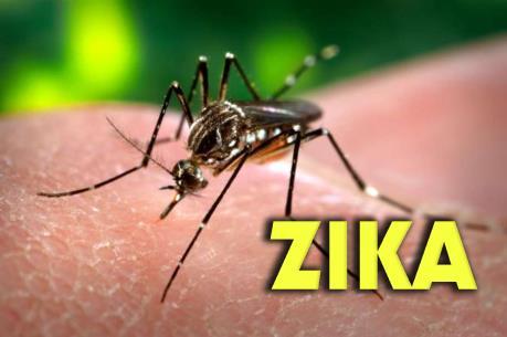 Dấu hiệu nhận biết và cách phòng chống bệnh do virus Zika
