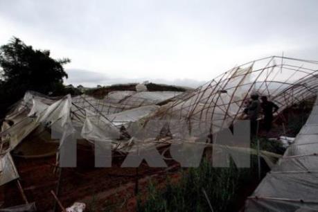 Cảnh báo: Chiều nay, tố lốc, mưa đá có thể xảy ra tại các tỉnh từ Đà Nẵng-Quảng Ngãi