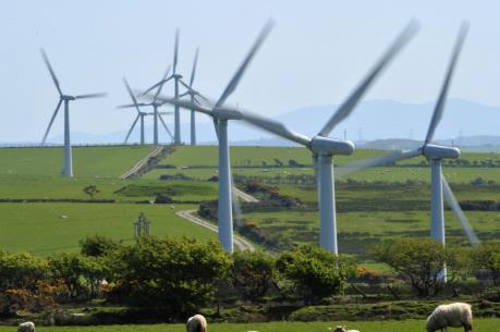 Năm 2015 đánh dấu mức tăng kỷ lục của năng lượng tái tạo