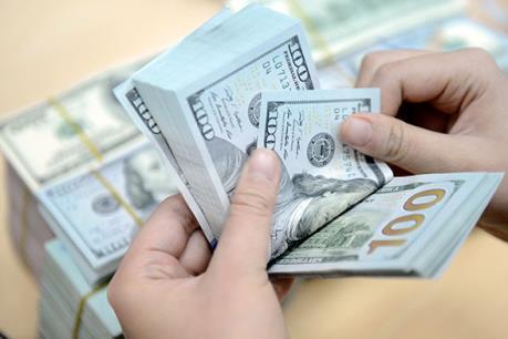 Tỷ giá trung tâm ngày 11/4 giảm 4 đồng