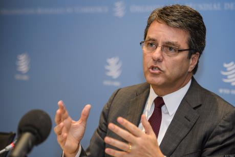 WTO: Việt Nam đang đi đúng hướng