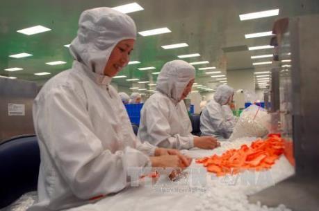 Doanh nghiệp Ai Cập muốn được miễn thị thực khi đầu tư tại Việt Nam