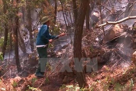 Hơn 20.000 ha rừng báo động cháy ở cấp cực kỳ nguy hiểm