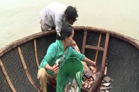 Chính phủ yêu cầu làm rõ nghi vấn ô nhiễm biển miền Trung do nước xả thải Nhà máy Formosa