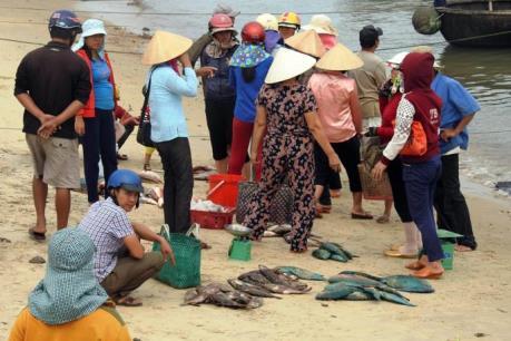 Tổng cục Thủy sản phản hồi về vụ cá chết hàng loạt ở biển miền Trung