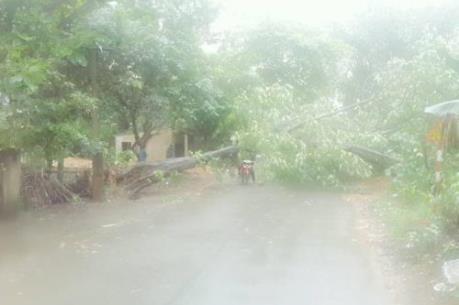 Mưa lũ tại Lào Cai gây nhiều thiệt hại về người và tài sản