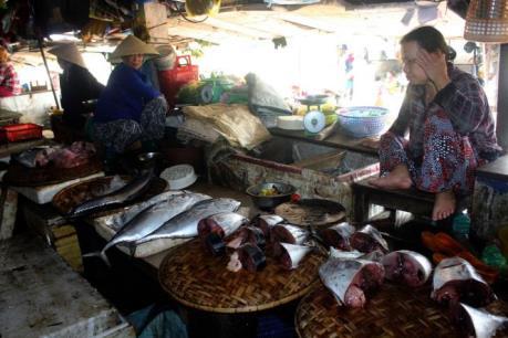 Cuộc sống người dân Quảng Trị lao đao vì cá biển chết nhiều