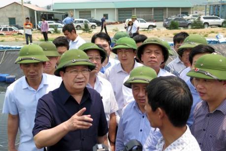 Phó Thủ tướng Trịnh Đình Dũng chỉ đạo hỗ trợ người dân thiệt hại do cá chết hàng loạt
