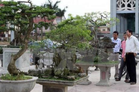 Festival Sinh vật cảnh lần đầu tiên được tổ chức tại Hà Nội