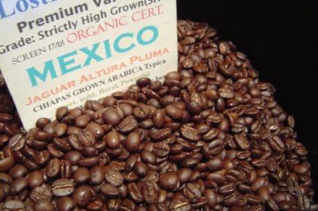 """Sản lượng cà phê Mexico dự báo ở mức """"đáy"""" của 40 năm"""