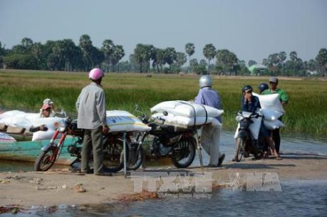 Tp. Hồ Chí Minh thu giữ 30 tấn đường lậu