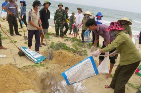 Vụ cá chết hàng loạt ở miền Trung: Bộ TNMT yêu cầu đẩy nhanh điều tra nguyên nhân