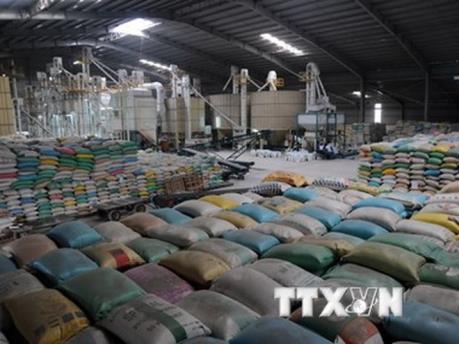 Thái Lan xả gạo tồn kho: Bộ Công Thương chính thức lên tiếng