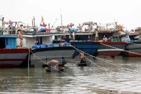 Tháo gỡ khó khăn cho ngư dân ven biển và đầm phá
