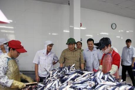 Hỗ trợ ngư dân Quảng Trị tiếp tục vươn khơi bám biển