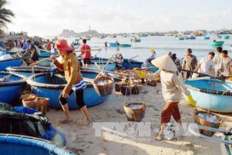 Nước biển ven bờ tại Thừa Thiên - Huế vẫn đảm bảo an toàn