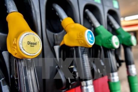 Thấm đòn vì giá dầu giảm, Saudi Arabia đẩy mạnh cải cách kinh tế