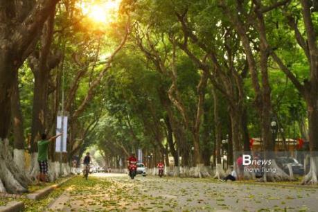 Dự báo thời tiết 5/10: Miền Bắc mát mẻ, Nam Bộ mưa dông