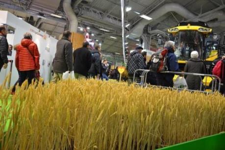 Xuất khẩu nông phẩm của Argentina tăng mạnh