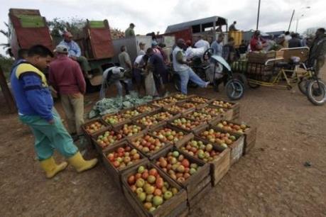 Cuba thắt chặt kiểm soát giá cả nông sản