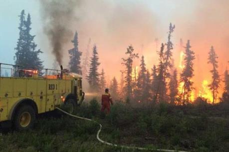 Tin mới nhất về cháy rừng ở Canada