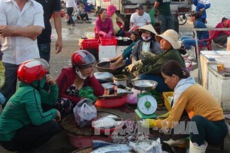 Vụ cá chết hàng loạt: Quảng Bình lập các điểm bán cá an toàn