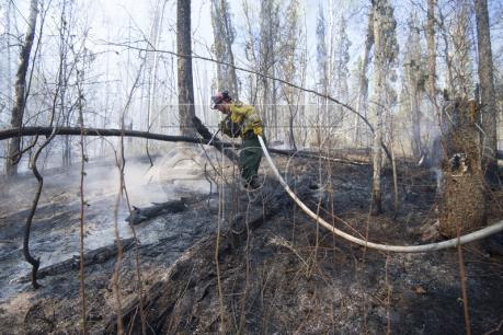 Cháy rừng đe dọa kéo lùi tăng trưởng kinh tế Canada