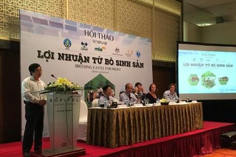 Chuyên gia quốc tế hiến kế phát triển bền vững đàn bò Việt Nam