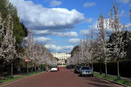 Tác động của Luật chống tham nhũng mới tới bất động sản Anh