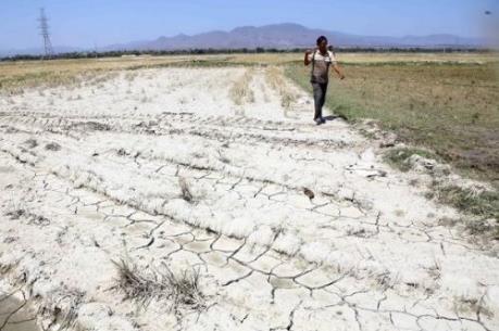 Khoảng 32 triệu người có nguy cơ bị đói vì hạn hán