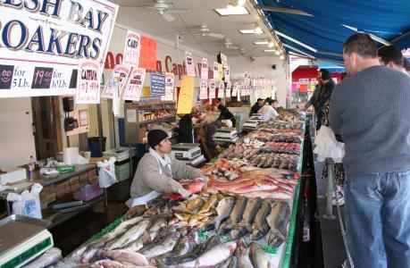 EP quy định dán nhãn nguồn gốc các loại cá tiêu thụ trên thị trường