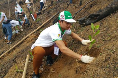 Honda Việt Nam trồng hơn 80 ha rừng tại Bắc Kạn