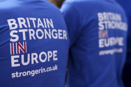 """Anh khởi động chiến dịch thông tin lớn về cuộc trưng cầu ý dân """"Brexit"""""""