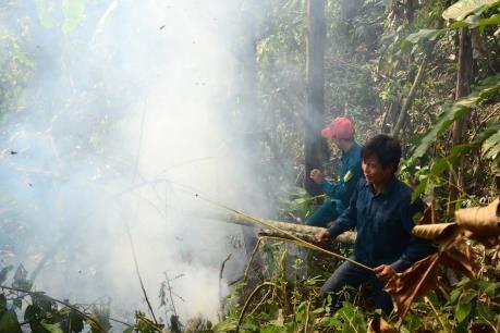 Khống chế vụ cháy rừng tại Quảng Ngãi