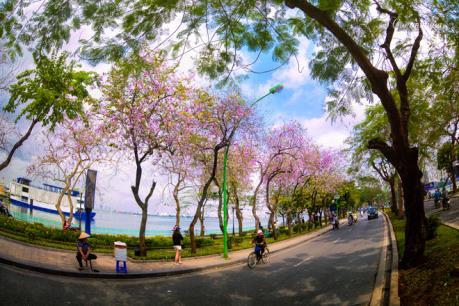 Hà Nội sẽ phát triển du lịch khu vực hồ Tây và sông Hồng